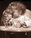 calin-bébé-chat